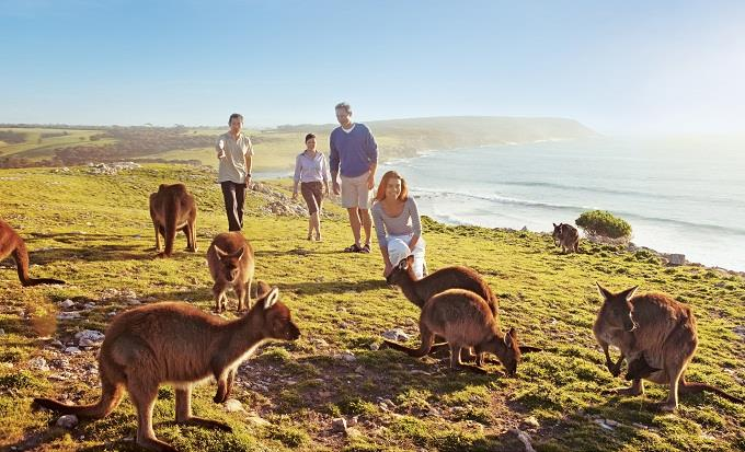 australia_family_tour_package_almiraaj1